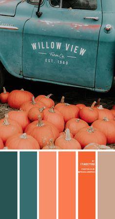 pumpkin and teal color scheme, autumn color scheme, teal and orange color scheme, orange autumn color combo Orange Color Schemes, Orange Color Palettes, Color Schemes Colour Palettes, Fall Color Palette, Colour Pallette, Teal Colors, Color Schemes Design, Pantone Colour Palettes, Color Blue