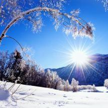 nature-snow-winter-sun-mountains-trees