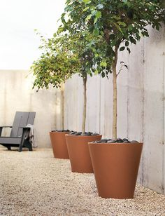 Large backyard landscaping ideas are quite many. However, for you to achieve the best landscaping for a large backyard you need to have a good design. Gravel Patio, Concrete Patio, Pergola Patio, Backyard Patio, Backyard Ideas, Patio Ideas, Patio Roof, Pergola Kits, Pergola Ideas