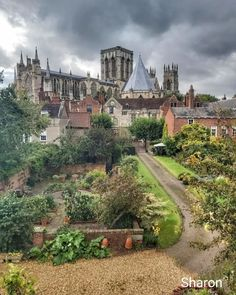 """Sharon on Instagram: """"York Minster - one of the world's most magnificent cathedrals. last weekend was spent in the Historic city of York, a walled city in…"""" York Uk, York Minster, Walled City, Cathedrals, Mansions, World, House Styles, Instagram, Manor Houses"""