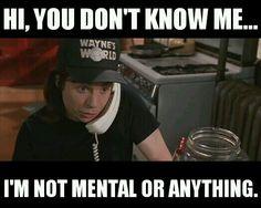 Mike Myers, Wayne's World 2