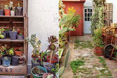 En el segundo patio, Gabriela tiene su vivero de suculentas almacenadas en cajones de verdulería apilados.  Foto:Living /Daniel Karp