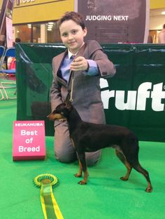 BOB English Toy Terrier is 12 year old Ryan Ross with - Witchstone China Girl from Poshpins