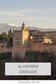 #andalousie #espagne #grenade #alhambra #weekend #citytrip #bonnesadresses Voyage Europe, Blog Voyage, Travel Goals, Granada, Taj Mahal, Landscapes, Traveling, World, Cities