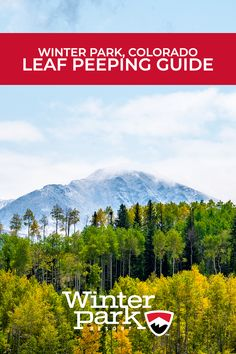 Fall has arrived in the Colorado Rockies! With cooler temps here in Winter Park, now's the best time to beat the heat and enjoy autumn in the mountains. Whether you're looking to hit the trails, relax outdoors, or take a scenic drive, we made this guide to help you venture out to see breathtaking fall colors. #Fall #LeafPeeping #FallColors #Autumn #MountainAdventure #Colorado #WinterPark #MountainGetaway #ColoradoRockies Winter Park Resort, Snow Showers, Aspen Leaf, Colorado Rockies, Autumn, Fall, Places To See, The Good Place, Relax