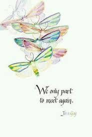 Resultado de imagem para dragonfly meaning quotes