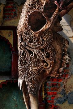 Gorgeous image, love all the texture and color.   Bone Collection by williamcho, via Flickr