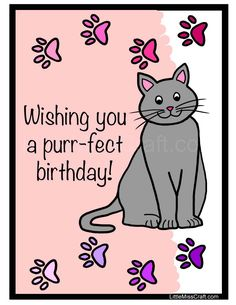 Cat Birthday Coloring Page Happy Bday Pics Pictures Wishes