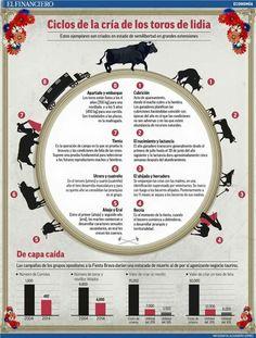 La vida del toro de lidia