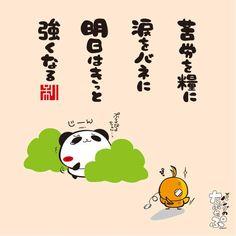 「苦労を糧に 涙をバネに 明日はきっと 強くなる」共感したらリツイートしてね!期間限定のお得なキャンペーン中!http://futabaonline.com/