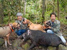 Boar Hog Hunting, Hiking Boots