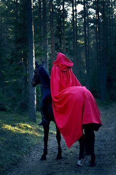 Little red riding hood costume Little Red Ridding Hood, Red Riding Hood, Horse Halloween Costumes, Book 15 Anos, Ange Demon, Big Bad Wolf, Red Hood, Fantasy World, Girl Photography