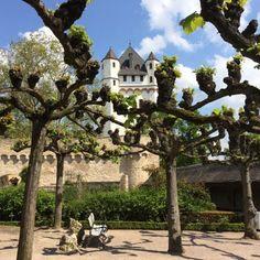 Conheça alguns castelos do Vale do Reno na Alemanha... um conto de fadas acessível e logo ali do lado de Frankfurt.