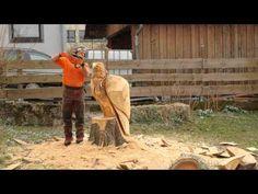 Zeitrafferfilm - Vom Baumstumpf zum Adler in sechs Minuten - YouTube