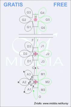 코스 - Middia.net