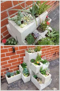 Cinderblock planter-Don't we have some of those left?