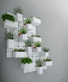 Plant Wall, Plant Decor, Decoration Plante, Deco Floral, Terraria, Indoor Plants, Indoor Gardening, Gardening Tips, Wall Garden Indoor