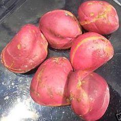 Noce+di+Cola Sud America, Superfoods, Potatoes, African, Vegetables, Potato, Super Foods, Vegetable Recipes, Veggies
