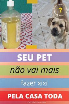 Pet Vet, Pet Dogs, Dog Sling, Mini Pinscher, Pet Peeves, Diy Stuffed Animals, Dog Care, Pet Shop, Shih Tzu