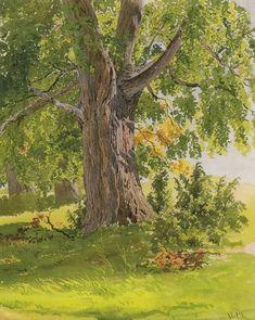 Sunny Oak by Ivan Shishkin