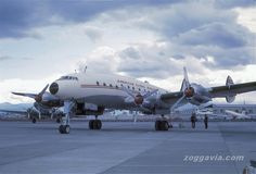 [c/n 2067] [may46-1974] [L049/L149] Lockheed Constellation [N88868] [American Flyers Airlines] [apr60] [1967]
