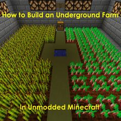 Are you tired of Minecraft villagers, animals and mobs trampling your crops? Learn how to build an underground farm, whether it is surrounded by torches or lit by a redstone circuit! Minecraft Garden, Minecraft Farm, Cute Minecraft Houses, Minecraft Plans, Minecraft House Designs, Minecraft Construction, How To Play Minecraft, Minecraft Crafts, Minecraft Buildings