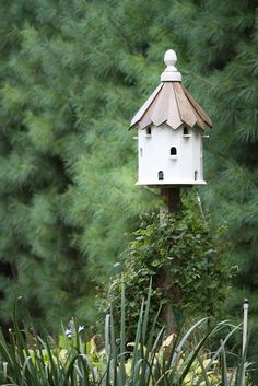 Add music to your garden by attracting birds to live and sing in your beautiful sanctuaries by building birdhouses #Exotic www.asiahomegarden.com