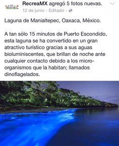Oaxaca. Quiero ir!
