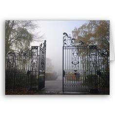 I love wrought iron gates                                                             What ghosts lie beyond?