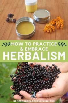 Herbalism can be a vast and huge topic but we can embrace natural healing at home with easy projects and methods. Get tips and tricks for making natural remedies and increasing your herbalism practice Natural Hemroid Remedies, Natural Add Remedies, Natural Remedies For Migraines, Natural Remedies For Allergies, Cold Home Remedies, Herbal Remedies, Natural Treatments, Natural Antibiotics, Sleep Remedies