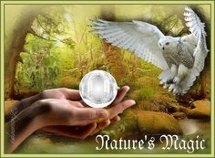 is the world's largest social network for good, a community of over 40 million people standing together, starting petitions and sharing stories that inspire action. Network For Good, Paint Shop, Beautiful Images, Worlds Largest, Fantasy Art, Magic, Nature, Painting, Psp