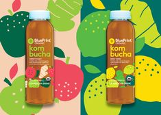 Illustration for a new line of kombucha drinks from blueprint the blueprint kombucha on behance malvernweather Image collections