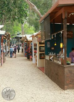 Wood chip paths between hand built booths in an old eucalyptus grove in Laguna Canyon