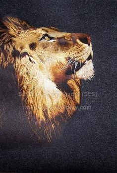 Lion, silk embroidery art, hand embroidered with silk threads
