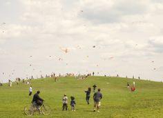 Kite Hill - 20x200