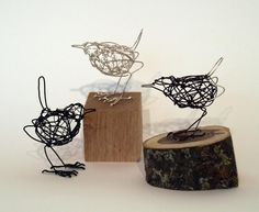 Wrens by Mel day