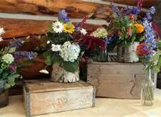 Rustic Wedding Decorations - Bing Images