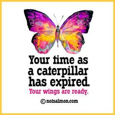 Your time as a caterpillar has expired. Your wings are ready. @notsalmon