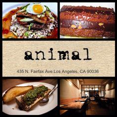 Animal - Los Angeles