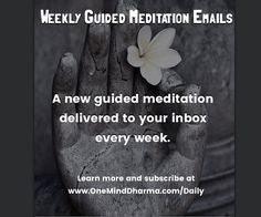 Subscribe to our Weekly Guided Meditation Podcast on iTunes Google Play YouTube or email! Check it out at http://ift.tt/2jS1D0G  #meditate #meditation #mindfulness #mindfulnessmeditation #mindful #meditating #meditatedaily #guidedmeditation