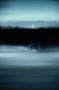 Photograph - Moonrise On The Water by Scott Norris