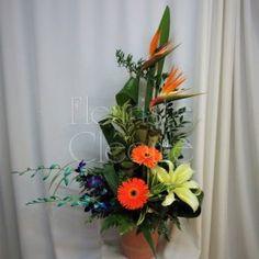 Arrangements funéraires | Fleuriste Cléome Montage de décès avec oiseaux du paradis, orchidées bleues et lys Arrangements Funéraires, Art Floral, Montage, Bouquets, Website, Plants, Floral Design, Floral Arrangements, Blue Orchids