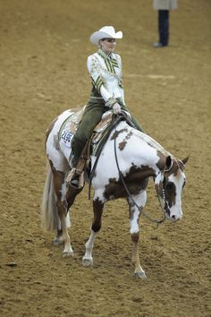 Photos from the APHA horse shows | APHA's Fall World Show | WesternHorseReview.com
