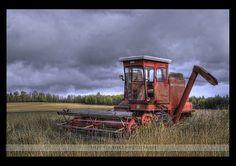 máquina cosechadora de trigo
