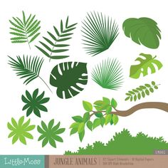 Jungle Animals Digital Clipart and Papers by LittleMoss on Etsy