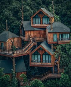 Insane treehouse (China) - Architecture and Home Decor - Buildings - Bedrooms - Bathrooms - Kitchen And Living Room Interior Design Decorating Ideas Beautiful Tree Houses, Cool Tree Houses, House Tree Plants, Treehouse Cabins, Treehouses, Treehouse Ideas, Tree House Designs, Forest House, Forest Cabin