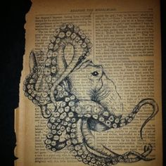 Octopus original drawing on old book paper by Brandy Collins. www.brandycollinsart.com
