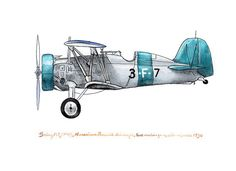 Boeing P12/F4B vintage airplane watercolor by FlightsByNumber, $20.00   Great little prints in this shop - check it out!