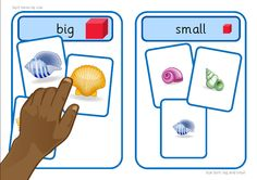 Printable activity, with a summer/beach theme, suitable for workstation use. Learners sort images into big or small groups. The base boards could also be used when sorting other items by size. Nursery Activities, Beach Activities, Sorting Activities, Animal Activities, Interactive Activities, Beach Theme Preschool, Summer Preschool Themes, Teacher Education Program, Speech And Language