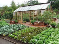 How to Plan a Bigger, Better Vegetable Garden - Organic Gardening - MOTHER EARTH NEWS